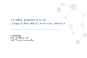 A practical approach to assess biological plausibility for endocrine disruption
